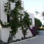 Impeccably maintained landscaping and gardens