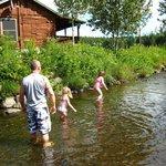 Brook/stream behind cabin