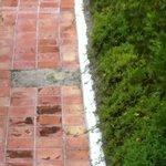 Missing tiles throughout the resort's walkways.