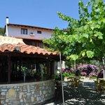 Bar, garden and hotel