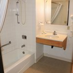 Handicapped accessible shower and sink