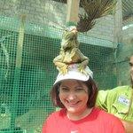 At the iguana santuary...Stephen puts a friendly iguana on my head.