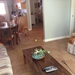 Livingroom/kitchen/small bedroom
