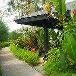 Gardens around Lagoon bungalows