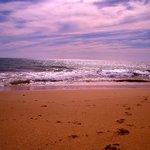 The amazing beach