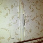 This is why old wallpaper is not a good idea in a poorly ventilated bathroom