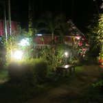 Un dîner sous les manguiers