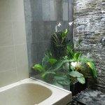La douche, au fond, extérieure, avec une orchidée!