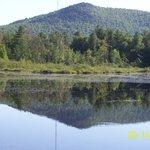 Beave Dam on Lake near Inn