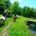 We have beautiful trails - over 117 acres of land.