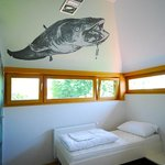 Catfish dogeater room