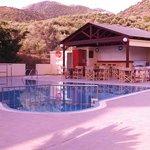 Le bar et la piscine