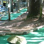The mini golf is set on a wooded hillside.