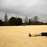 Napping in the English Landscape Garden