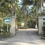The palm lined entry gate at Playa Las Tortugas