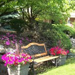 Relaxing, sunny courtyard
