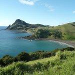 Fletcher Bay - Start of the walk