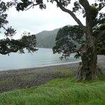 Stony Bay - end of the walk
