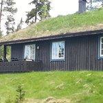 Cabin 823