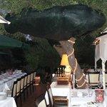 foto ristorante