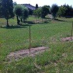 Gartengelände