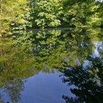 Pond near Offa's Pool