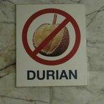 Durian.Stinkfrucht ist in Hotels nich elaubt