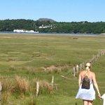 Our walk upto Portmeirion from Estuary cottage