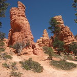 Red Canyon Hoodoo columns