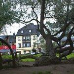 Hotel Meder from the Rhein River
