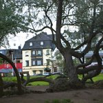 View of Hotel Meder from park on Rhein