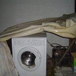 professional laundry...