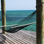 Best hammock at Small Hope!