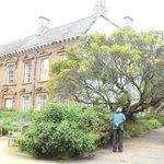 The garden, Old Tullie House