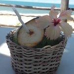 agua de coco na praia