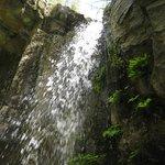 Hedge Creek Falls