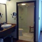 Toilet, sink, shower area