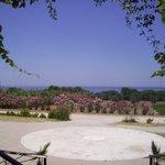 Fotografia lokality Balci Plaza