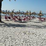 Foto de Hotel Aluasoul Alcudia Bay