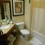 Bathroom was cramped, but clean and functional.