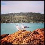 emu point beach, griffith street beach