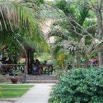 Garten mit Blick auf Rezeption und Frühstücksbereich