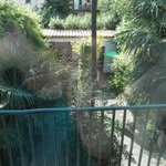 View of garden from balcony