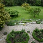 View of the garden from the room