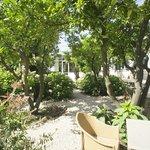 Quiet snd shady garden