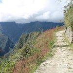 Camino del inca hacia Intipuncu