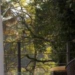 Varanda e vista da Suite Eco