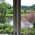 River view from dining room