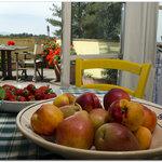 Frutta del nostro Frutteto e Orto Sinergico (tutto bio)