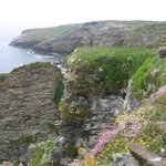 View from the coast path during our hike towards Tintagel Castle